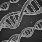 Wykrywanie DNA z powietrza możliwe? Przełomowe odkrycie naukowców